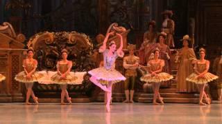 Lilac fairy variation - Eve Grinsztajn