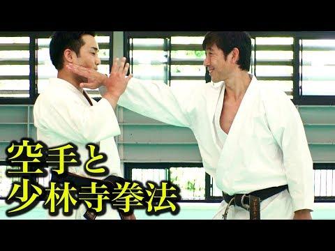 少林寺拳法の総本山で空手を見せる!Tatsuya Naka shows Karate at Shorinji Kempo