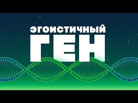 БОЛЬШОЙ РАЗГОВОР #ШВК по теме «Эгоистичный ген» 04.06.18