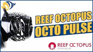 Octo Pulse Pumps by Reef Octopus: What YOU Need to Know