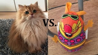 Smoothie The Cat Vs. Toby The Mouse