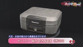 【セントリー】 ポータブル耐火(30分)・防水保管庫(フラットキー式) 7.8L