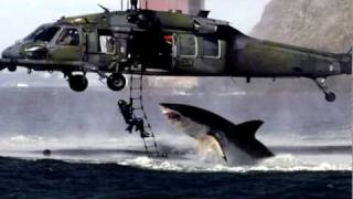 Photo Hoax: #2 - Shark Attacks Helicopter!
