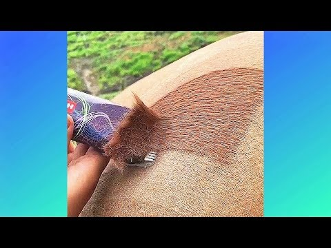Best Weird Satisfying Videos And Relaxing Music And Watch before Sleep (P22)