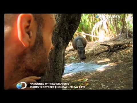 Scavenging & Finding a Toothbrush - Ed Stafford: Naked and
