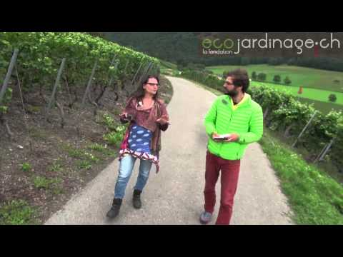 Barbara Garofoli, permaculture  Suisse (30 min)