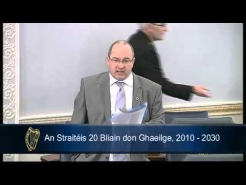 An Seanadóir Ó Clochartaigh ag labhairt le linn Raiteasaí ar an Straitéis 20 Bliain don Ghaeilge