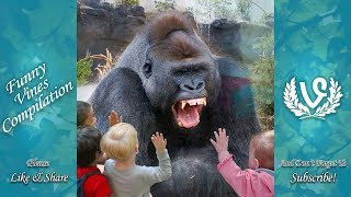 Download Animals Scaring Kids At Zoo   Animals Love To Scare Cute Kids Mp3 and Videos