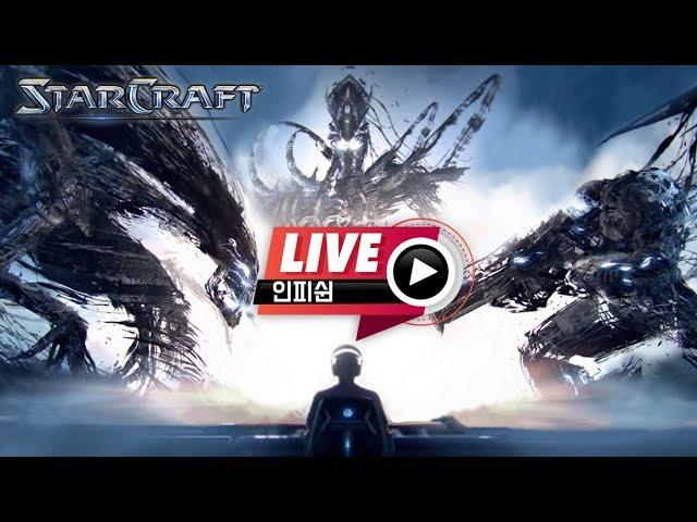 【 인피쉰 LIVE 】 빨무 빠른무한 스타크래프트 스타 팀플 ( 2019-11-14 목요일 )