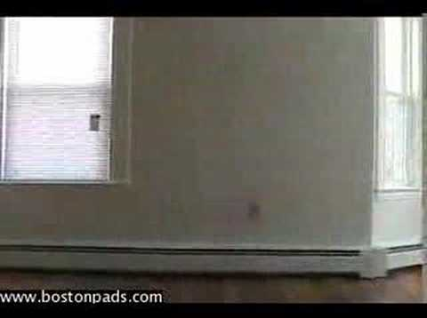 Huge Brighton Apartment for Rent in Boston