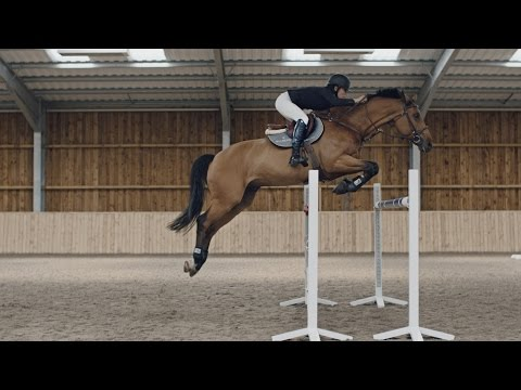 Seeing The Stride: The Story of Tess Carmichael, British Show Jumper