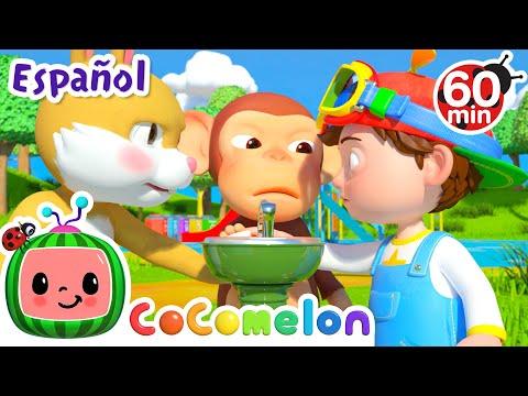 CoComelon en Español   Espera tu turno   Compilación de Canciones Infantiles y de Cuna