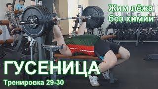 ГУСЕНИЦА по Суровецкому А.Е. Видео: 12