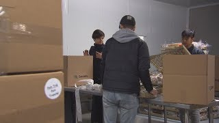 Volunteers pitch in at Montreal food banks