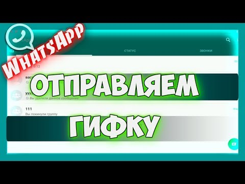 Whatsapp - как отправить гифку в ватсапе