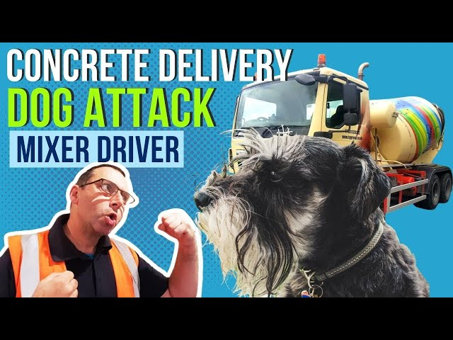 Concrete Delivery Mixer Driver Attacked by a Dog !