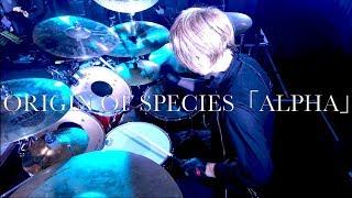 ORIGIN OF SPECIES「ALPHA」ドラム定点カメラ