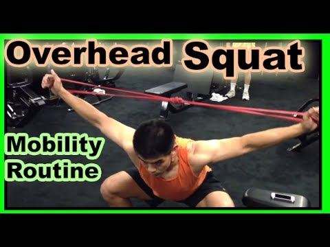 Overhead Squat Mobility routine Day 7/14 Episode 7 stretch routine for the broken leopard