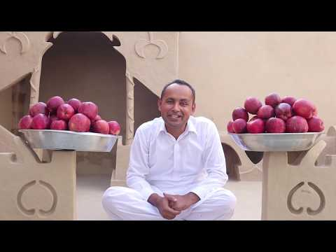 Apple Chaat | Fruit Chaat Recipe | Chaat Recipe By Mubashir Saddique | Village Food Secrets