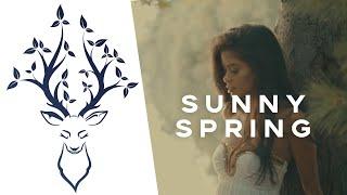 La Belle Mixtape   Sunny Spring (Chill Mix 2019)