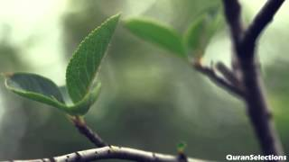عبدالعزيز الزهراني - الحاقة | Quran] Abdulaziz Az-Zahrani - Al-Haqqah]