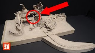 25 Most BIZARRE FOSSILS Ever Discovered