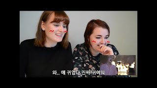 [한글자막] 노르웨이안 사람들의 KPOP반응2(twice, bts, black pink)