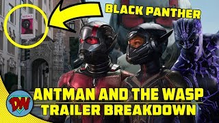 Ant Man and The Wasp Trailer Breakdown | Explained in Hindi
