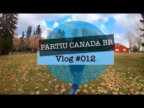 DIA LINDO PRA TIRAR FOTOS DE OUTONO!!! - Calgary - Vlog #012