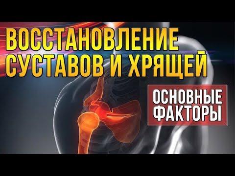 Рецепт восстановления суставов 100% ) эффект