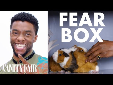 Black Panther Cast Touches a Chameleon, a Guinea Pig, and Other Weird Stuff   Fear Box   Vanity Fair