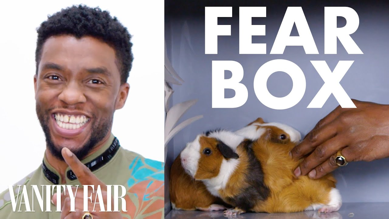 Download Black Panther Cast Touches a Chameleon, a Guinea Pig, and Other Weird Stuff | Fear Box | Vanity Fair