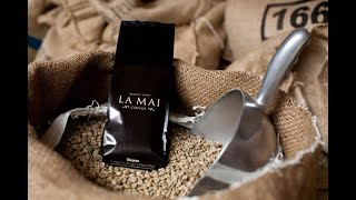 Java Jive Episode 13 Where does your coffee come from?