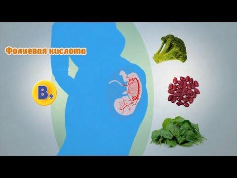 Как правильно питаться беременной