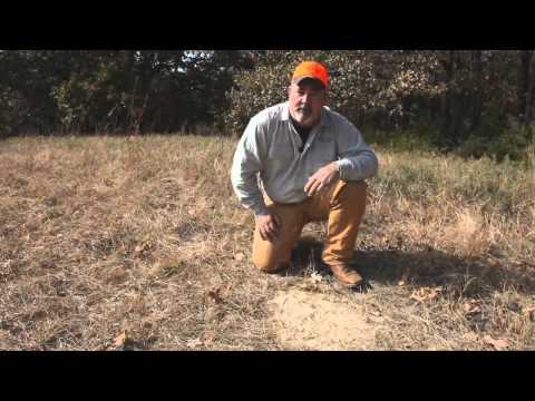 Deer Hunting 101: Using deer attractant supplements