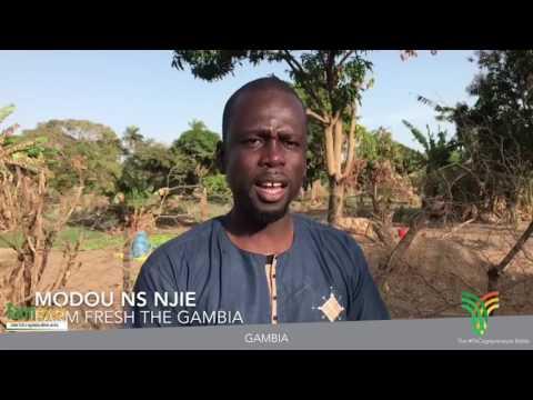 FARM FRESH ONLINE - Gambia