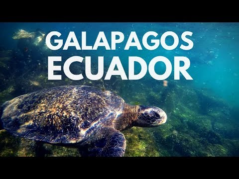 Ecuador | Part 1/3: Galapagos Islands - G Adventures