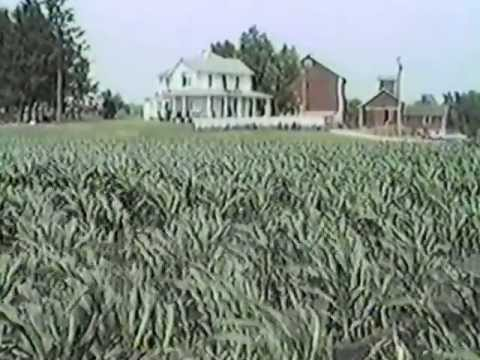 """Rare Behind the Scenes Footage From """"Field of Dreams"""" Part 2 mpg"""