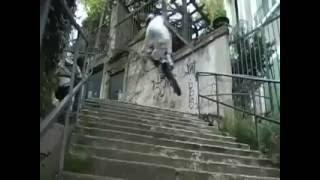 cascade rue enduro freestyle -  Urban Trial Freestyle   Enduro