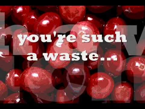 The Cranberries such a waste with lyrics