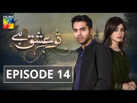 Tu Ishq Hai Episode #14 Hum TV Drama 10 January 2019