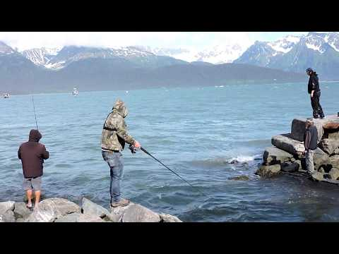 Fishing For Wild Alaskan Salmon