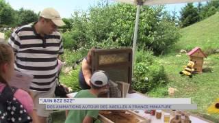 Environnement : un juin «Bzz Bzz» à France Miniature