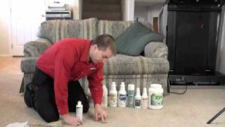 How to Remove Stains Without Damaging Your Carpet