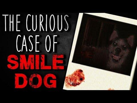 """""""The Curious Case Of Smile Dog"""" Creepypasta"""