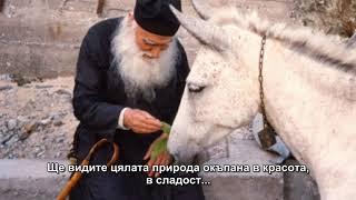 Как да казваме Иисусовата молитва, ст. Ефрем Катунакски