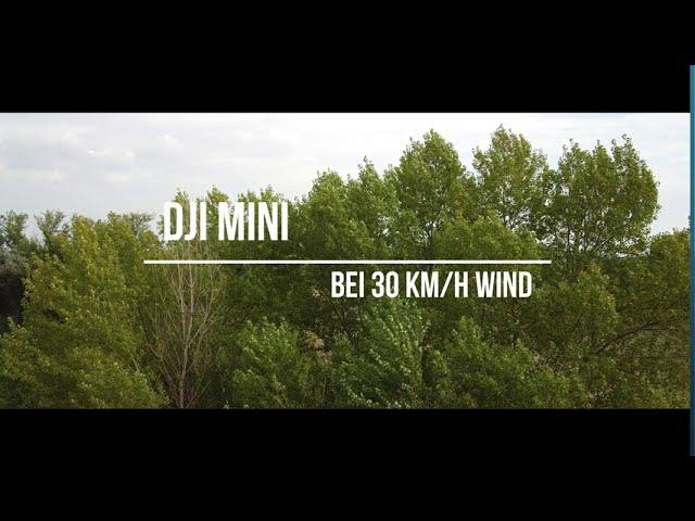 DJI Mini bei 30 Km/h Wind
