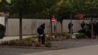 Kandel: Polizeihund verbeißt sich in Demonstrant