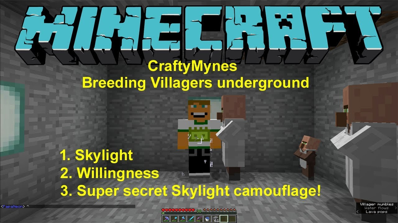 Φ Minecraft breeding Villagers under ground - neverdigup