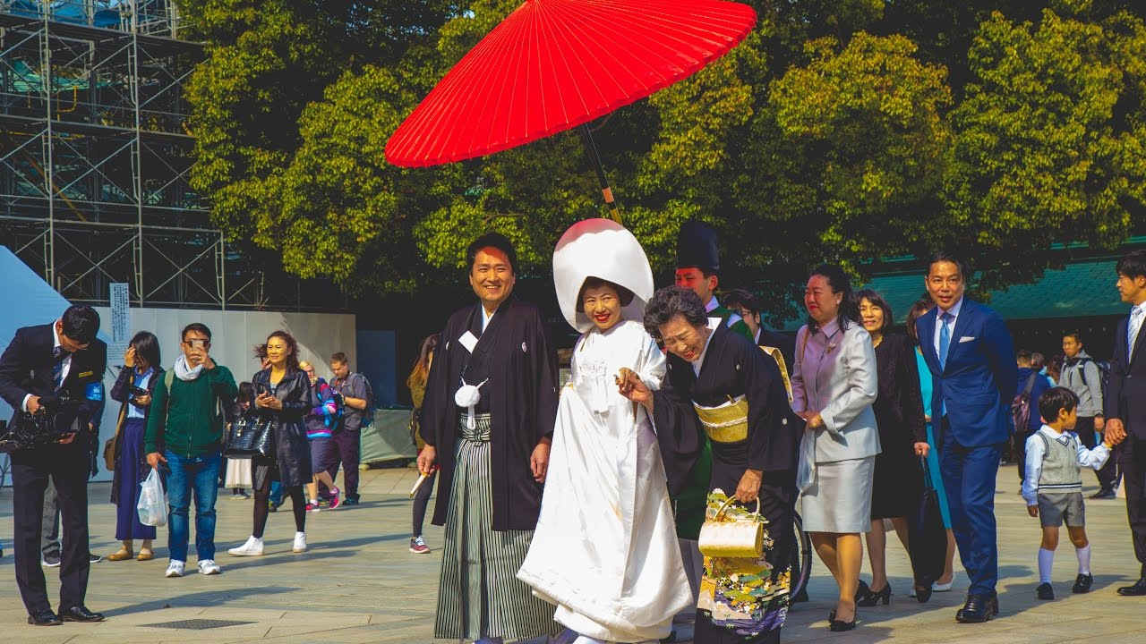 Traditional Japanese Wedding.Traditional Japanese Wedding Ceremony